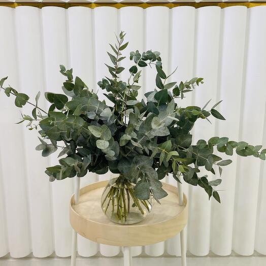 Моно букет из свежего ароматного эвкалипта