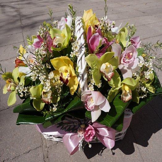 Чудесные орхидеи: букеты цветов на заказ Flowwow