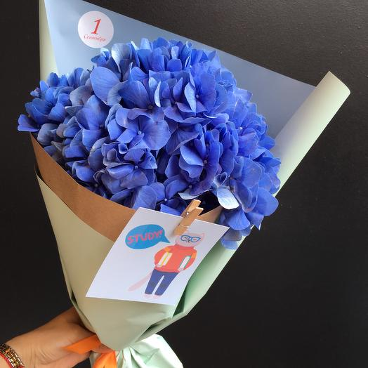 Букет в школу: букеты цветов на заказ Flowwow