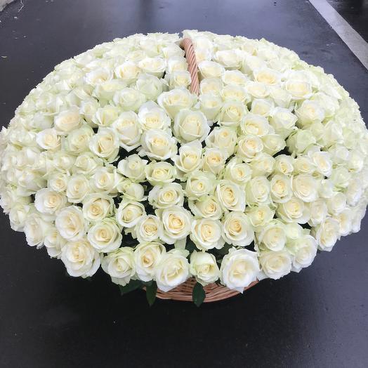 Корзина роз Белое облако: букеты цветов на заказ Flowwow
