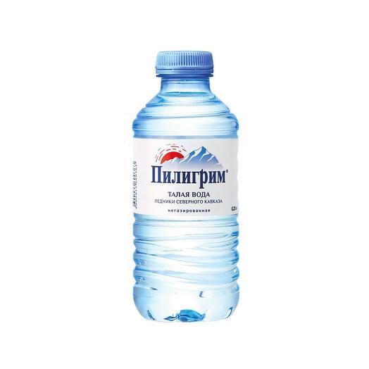 Вода 0,5л. Пилигрим (12 штук в упаковке): букеты цветов на заказ Flowwow