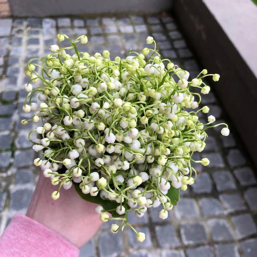 Ароматные Ландыши: букеты цветов на заказ Flowwow