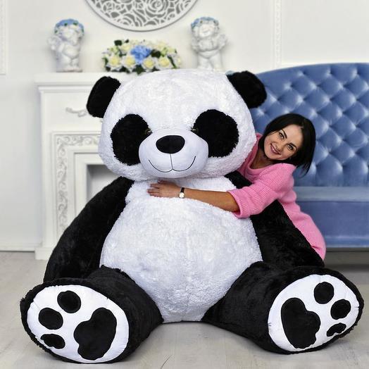 Большая Панда Ричард 220 см
