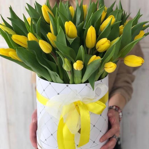 49 Тюльпанов в шляпной коробке