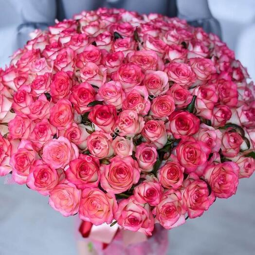 101 роза Джумилия (80см)