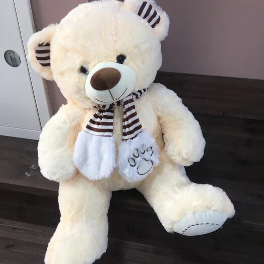 Медведь Ростовой