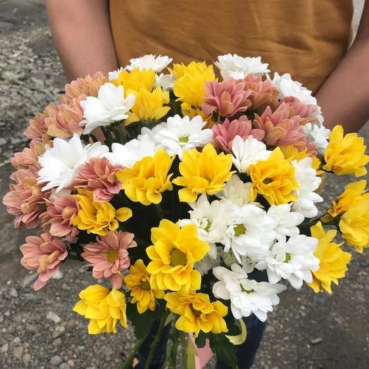 Букет из 9 разноцветных хризантем: букеты цветов на заказ Flowwow