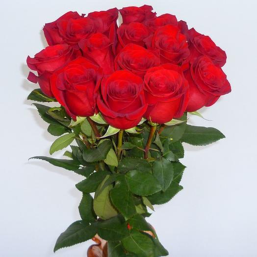 15 красных роз (страна Эквадор): букеты цветов на заказ Flowwow