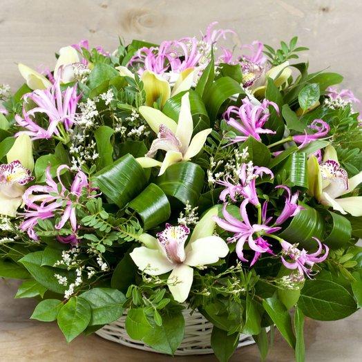 Шикарная корзина с орхидеями: букеты цветов на заказ Flowwow