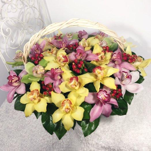 Корзина разноцветных орхидей