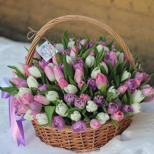 Премиум корзина из 151 тюльпана