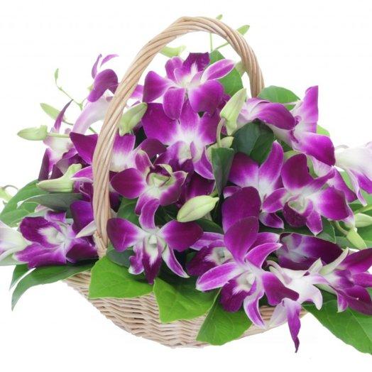 Дендробиум в корзине: букеты цветов на заказ Flowwow