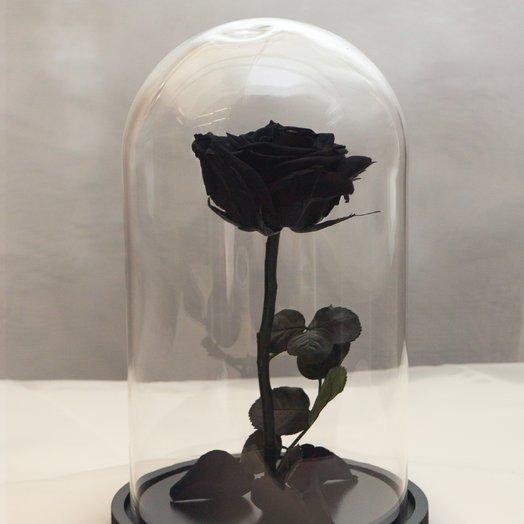 Роза в колбе RozaRose Медиум Черная