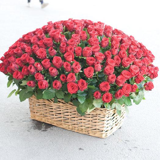 """Корзина из 251 розы """"Ред Наоми"""""""