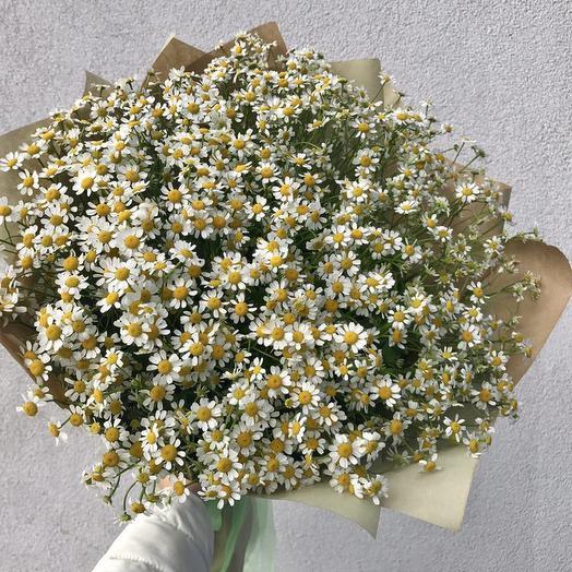 Нежная ромашка: букеты цветов на заказ Flowwow