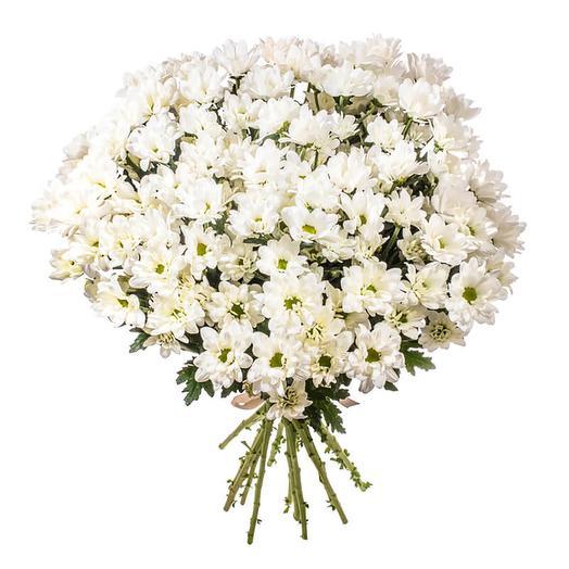 Букет ромашковых хризантем: букеты цветов на заказ Flowwow