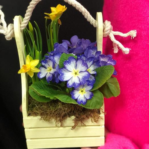 Мини композиция из первоцветов: букеты цветов на заказ Flowwow