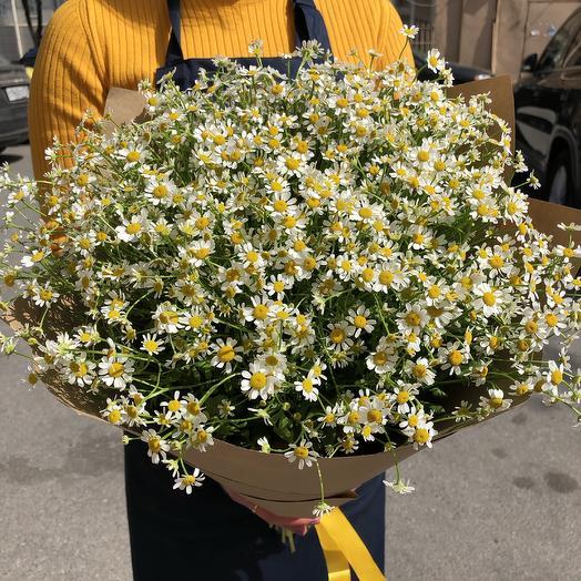 Очень много ромашек: букеты цветов на заказ Flowwow