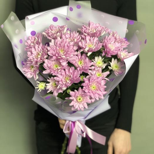 Моно хризантем