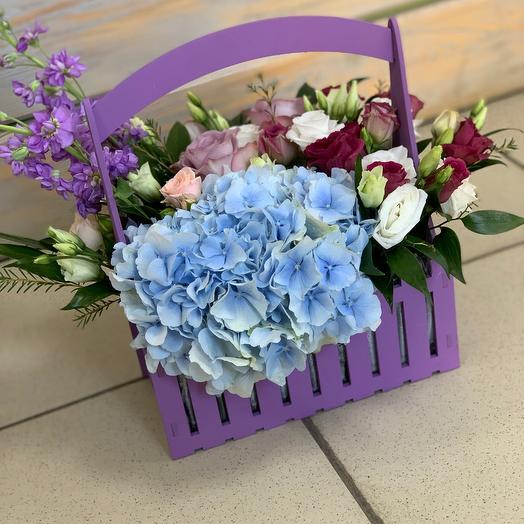 Фиолетовый ящик