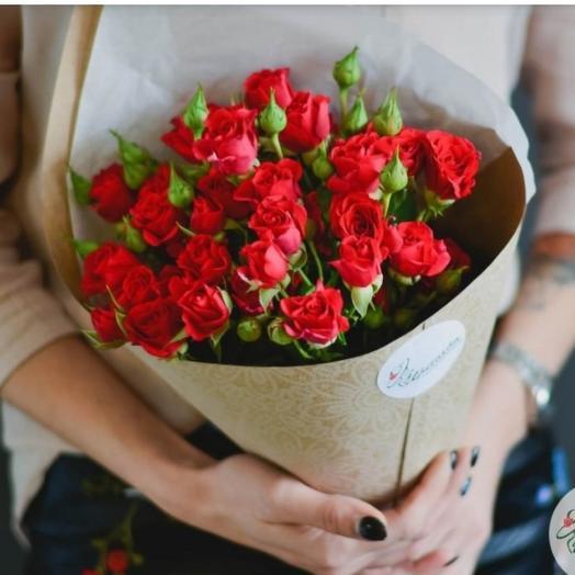 Роза кустовая красная 7