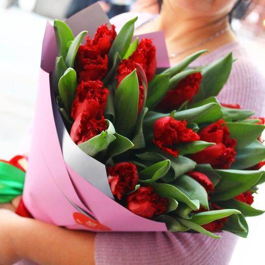 Тюльпаны бахромчатые 19