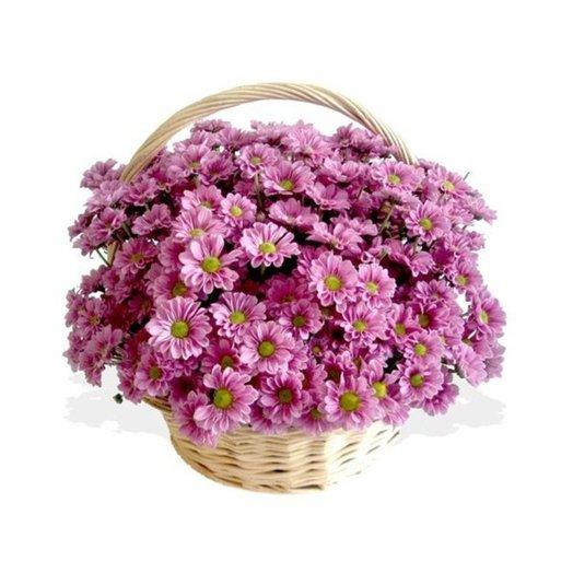 Большая корзинка с хризантемами