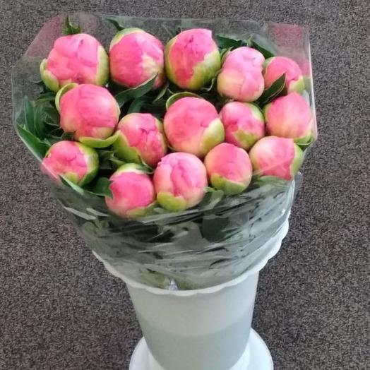 Пион Голландия: букеты цветов на заказ Flowwow