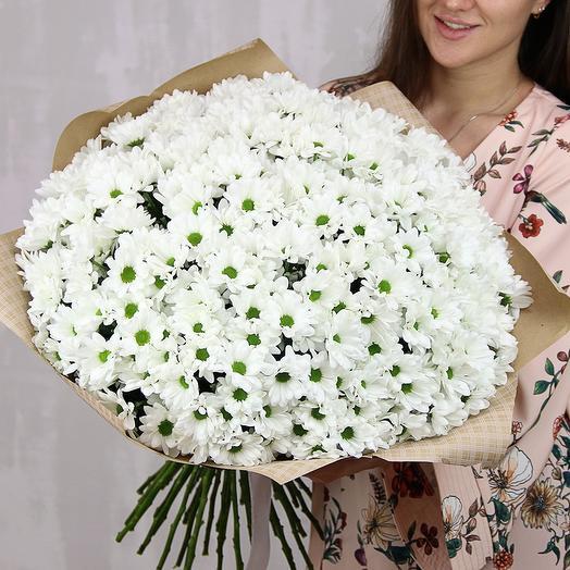 Букет из 51 белой кустовой хризантемы Бакарди в стильной упаковке