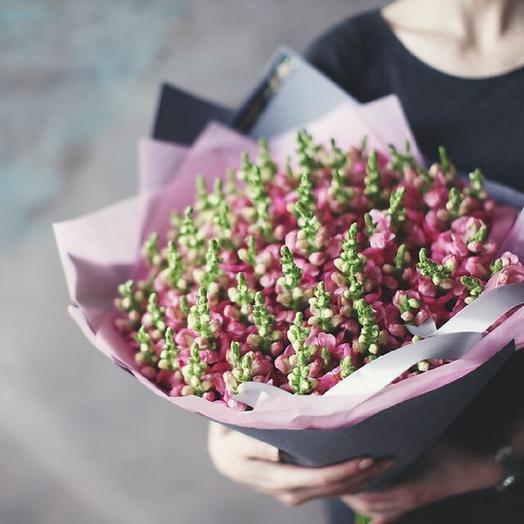 Большой букет из малиновой маттиолы: букеты цветов на заказ Flowwow