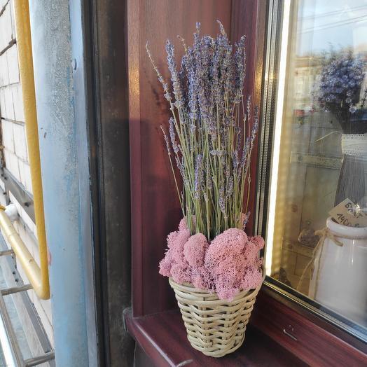 Лаванда сухоцветы в корзинке