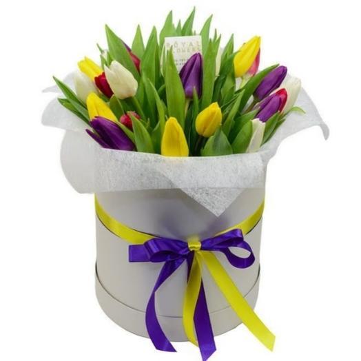 Любимая коробочка с тюльпаном