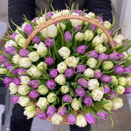 Корзина из 151 тюльпанов