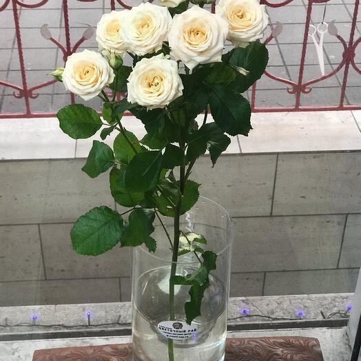 Кустовая Роза (80 см)