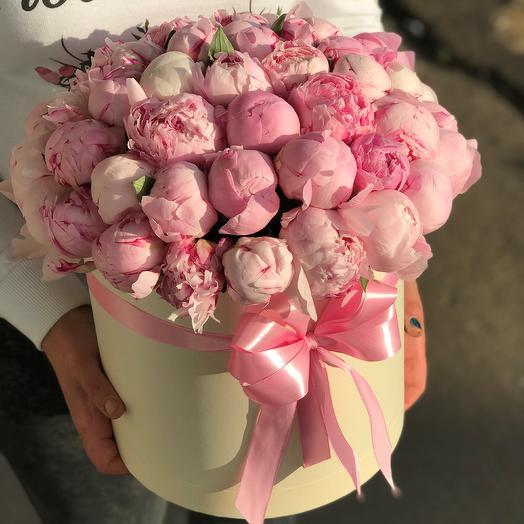 Пионы. Коробка из 51 розового пиона. N423: букеты цветов на заказ Flowwow