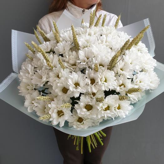 Букет из ромашковой хризантемы: букеты цветов на заказ Flowwow