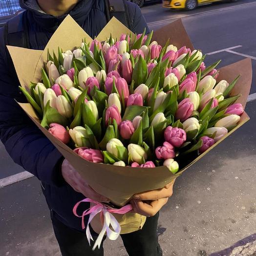 101 бело розовый тюльпан