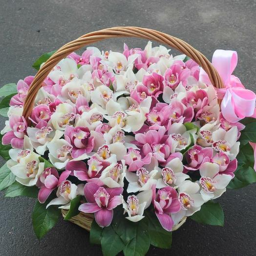 Корзина с орхидеей цимбидиум нежная