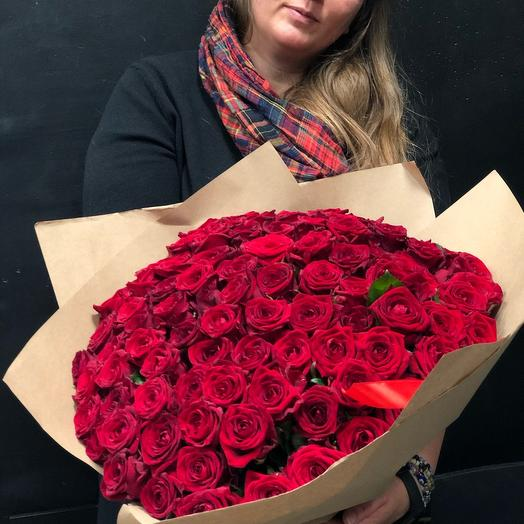 101 Бордово красная роза