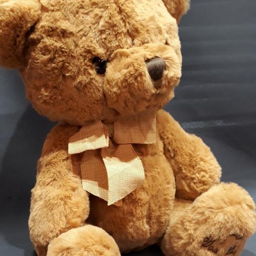 "Медведь ""Тедди"""