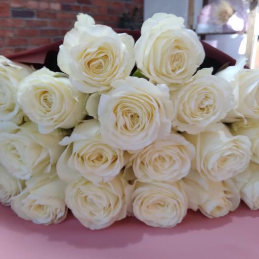Ароматная эквадорская роза