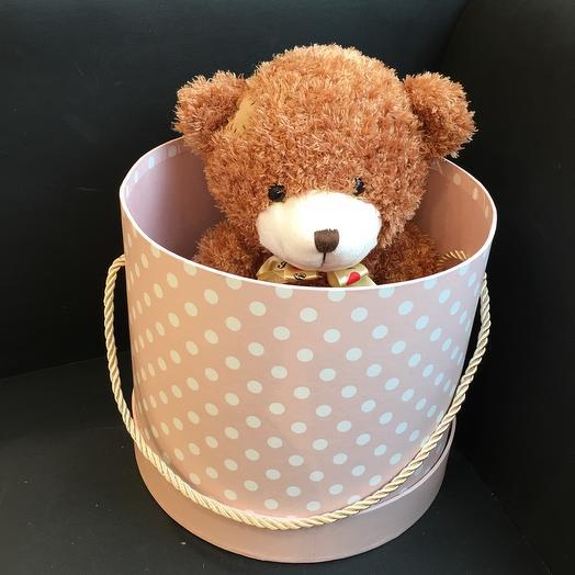 Медвежонок в шляпной коробке