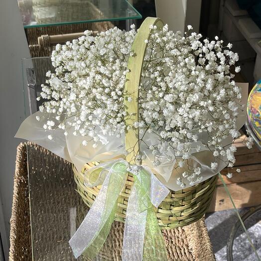 Gypsophila monobook in a basket