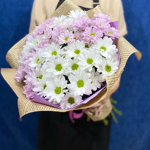 9. Бело-сиреневый МИКС хризантем