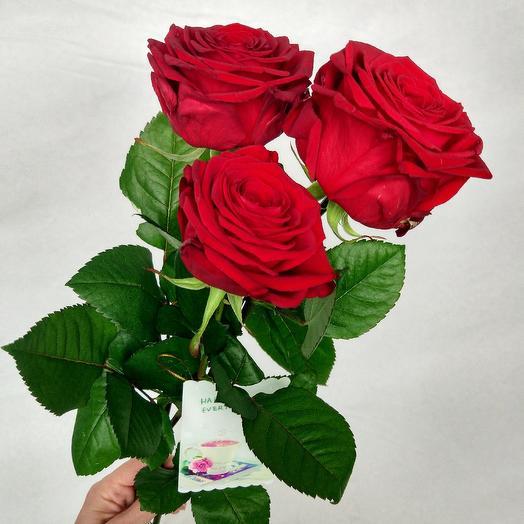 Букет из 3 красных роз: букеты цветов на заказ Flowwow