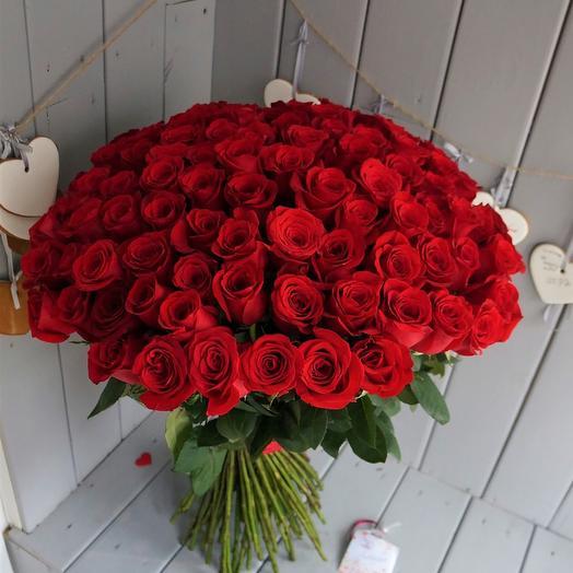 101 элитная эквадорская роза 60см
