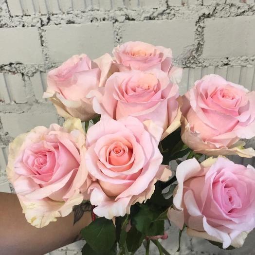7 роз нежно-розово цвета: букеты цветов на заказ Flowwow