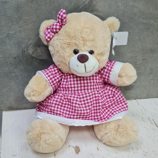 Дашенька медведь