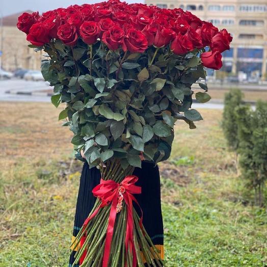 51 100 cm roses