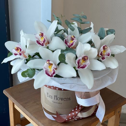 Орхидеи в подарочной коробочке